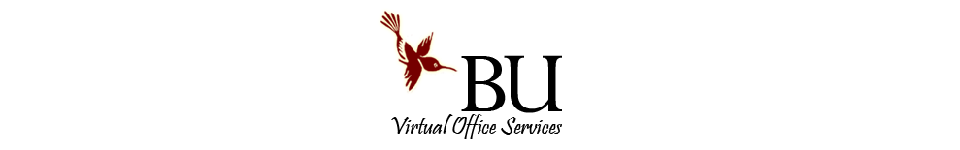 Bu Virtual Office Services